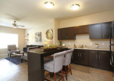 Sansom Pointe Apartment Kitchen
